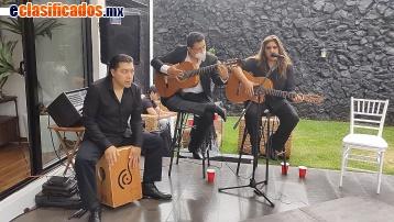 Vista previa de Flamenco llamanos